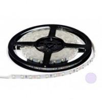 Світлодіодна стрічка 12В B-LED 3528-60 IP65 білий
